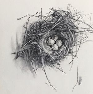 """Little nest"""